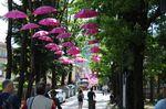 Die Regenschirme dienten beim 100. Giro nur zur Dekortation - oder als Sonnenschirm. (Bild: Sirotti)
