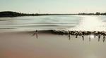 tidal-bore-foil-surfing-mascaret