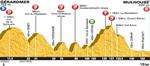 Tour de France, Etappe 9, Tony Martin