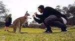 Du wolltest schon immer mal nach Australien? Der kunstform-Teamfahrer Jonas Bader verrät, worauf du bei deinem Trip nach Down Under achten solltest.