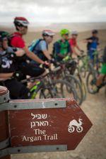 Kamele auf Rädern weisen den Weg für Mountainbiker