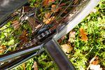 Demolition Part BMX Freecoaster