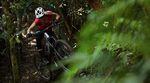 NZ-Home-Trails-Nelson-Dirt-Feat