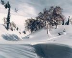 kaschmir, snowboard