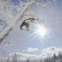 japan, snowboard