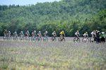 Bilder, die die Tour de France beschreiben: Das Peloton rollt ....(Fotos: Sirotti)