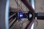 Der Hybrid-Freecoaster von Wethepeople BMX