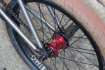 Primo BMX Freemix Coaster