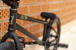 Der Rush Frame von All In BMX wurde speziell zum Parkfahren entwickelt