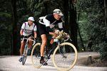 B18_L'Eroica-Vintage-Rennen-Toscana