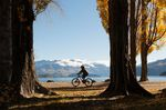 10 Best Things to Do on a Gap Year in New Zealand cycle