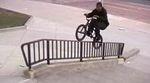 Edwin De La Rosa Animal Bikes