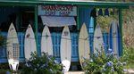 Wenn du ein Surfboard im Sharkscove Surfshop auf Hawaii kaufst, hast du gute Chancen, dass dein Board lang bei dir bleibt...