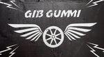 """Am 12.8.2017 findet in Plauen die 9. Auflage des """"Gib Gummi""""-Contests statt. Hier gibt"""