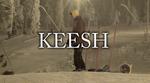 Keesh