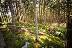 Epischer Trail in Stage 2. TRAILTROPHY/Wisthaler.com-Schwienbacher
